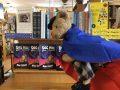 Sebastian T. Bear dons a Super Power cape for reading!